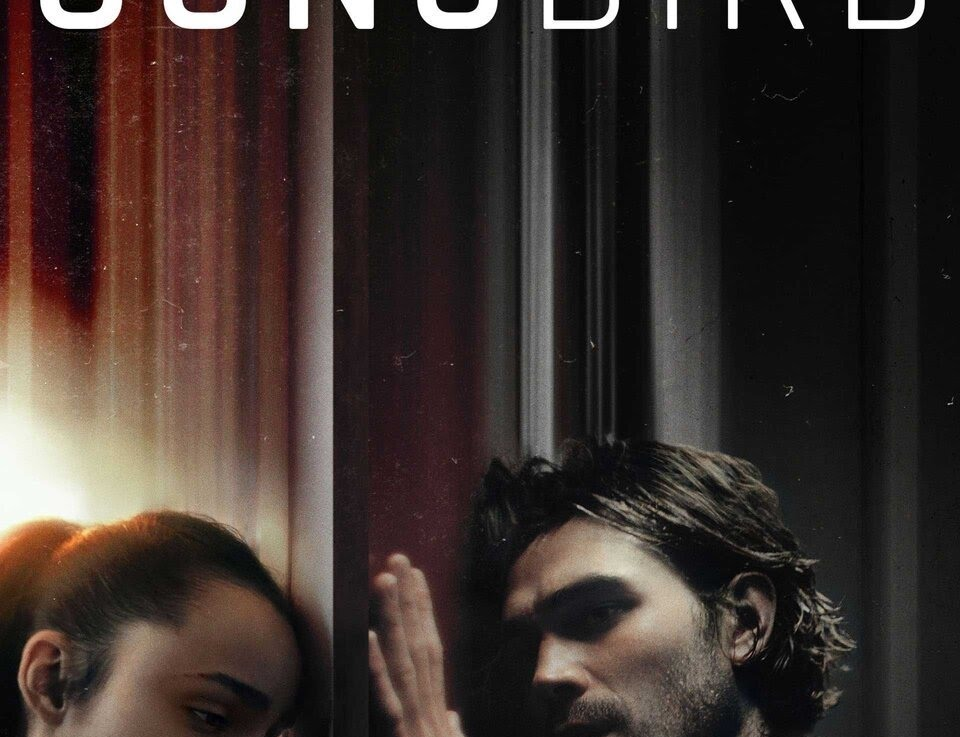 Songbird Review