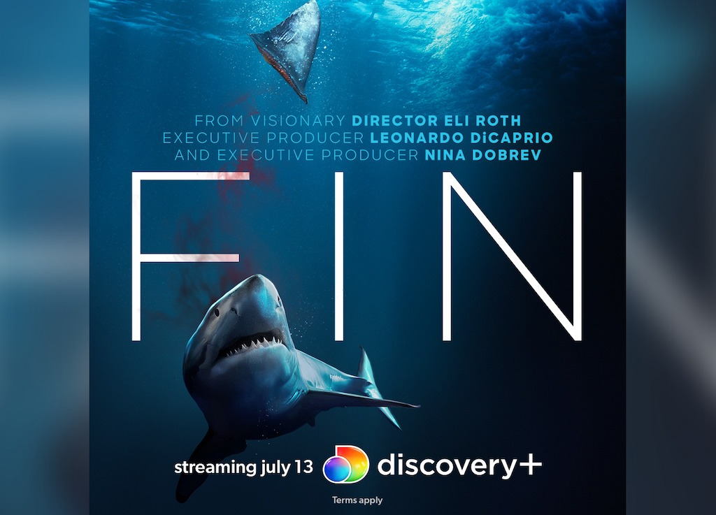 'Fin' (2021) Review